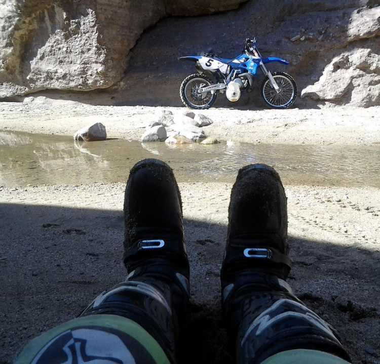 The best boots wanting to ride...