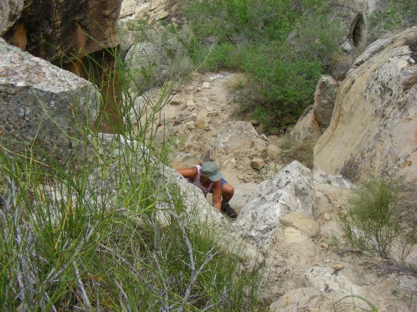 Norm scrambles up a rocky ledge in the Dinosaur National park...