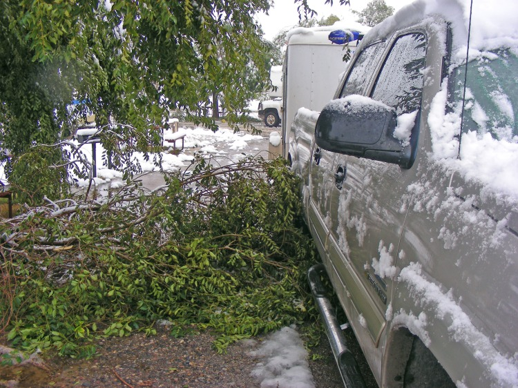 This tree branch just barely missed the truck. It rained for hours and when it stopped, it changed to snow...