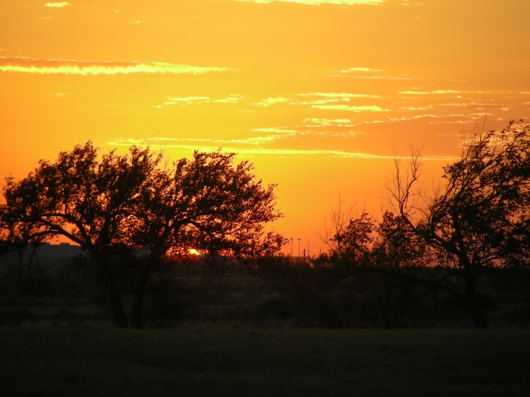 Sunset, McAdams Park, Hobbs New Mexico...